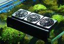 Akvaryum Suyunu Soğutma Yöntemleri